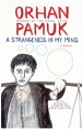 Book: A Strangeness in My Mind (mentions serial killer Süleyman Aktaş)